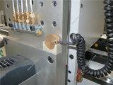 خشبيّة يعمل [كنك] [إنغرفينغ] آلة خشبيّة 1325 مع [هيغقوليتي]