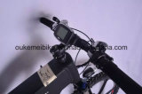 Gebirgsmodell, Mittler-Fahren elektrisches Fahrrad (OKM-1361)