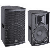 Cvr bidirezionale, Full Range Loudspeaker System 10 Inch Cheap Speaker