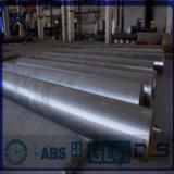 Barra dell'acciaio legato/barra rotonda d'acciaio Polished luminosa