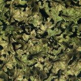 Kingtop 1m Film Wdf9030 van het Beeld van de Druk van de Overdracht van het Water van het Ontwerp van de Camouflage van de Breedte Vloeibare