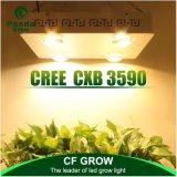 심천 공장 직매 400W Cxb3590 LED는 빛을 증가한다