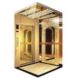Home Use를 위한 호화스러운 Elevator Lift