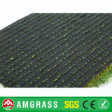 مجعّد وعشب مستقيمة اصطناعيّة لأنّ إستعمال مختلفة