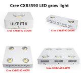 L'imbroglione originale Cxb3590 LED del CREE di alta qualità coltiva l'indicatore luminoso