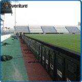 A cor cheia ao ar livre ostenta a tela do vídeo do diodo emissor de luz do estádio