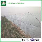 Serra della pellicola della Multi-Portata PE/Po di doppio strato di agricoltura
