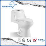 Toalete cerâmico do armário de uma peça só de Washdowm do banheiro (AT0350A)