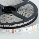 SMD5050/2835のRGBW Flex LED Rope Light/Flexible LED Strip Light