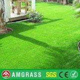 [35مّ] إرتفاع إحساس ليّنة اصطناعيّة يرتّب عشب