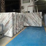半透明な磨かれた銀製のドラゴンの大理石の平板