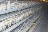 Оборудование клетки цыпленка яичка хорошего качества