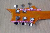 Fotorezeptoren reden an,/Mahagonirumpf u. Ansatz,/Afanti elektrische Gitarre (APR-086)
