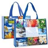 Nuovo sacchetto di disegno, sacchetto di acquisto, sacchetto non tessuto, sacchetto più poco costoso