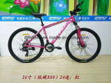 26 polegadas Alloy Frame MTB Bike, bicicleta de montanha, bicicleta BTT de 24 velocidades,