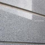 Natürlicher Granit, der graue Fliese des Granit-G603 für Countertop poliert