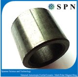 Los anillos de varios polos anisotrópicos del imán de la ferrita modificaron productos para requisitos particulares