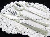 Couverts d'acier inoxydable de vaisselle plate d'acier inoxydable de vaisselle d'acier inoxydable