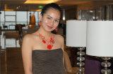 Shining ожерелье с комплектами смолаы круга и ювелирных изделий серег