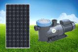 高品質DCの太陽プールポンプ