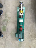 Ketchup를 위한 위생 Screw Pump Food Grade Screw Pump