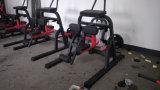 Aoliteの適性の商業ひざまずく足カールの体操機械