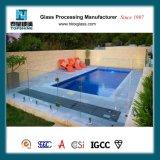 Frontière de sécurité normale en verre Tempered de l'Australie Frameless pour la piscine