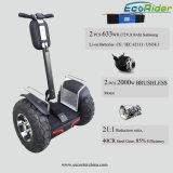 Auto senza spazzola della batteria del doppio da 4000 watt delle 2 rotelle che equilibra motorino elettrico