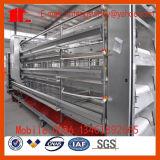 De Kooi van de Apparatuur van Poultrry van de Machines van het landbouwbedrijf voor het Gebruik van de Braadkip van de Laag