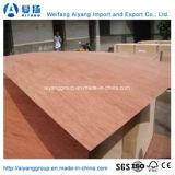 家具のためのAAの等級のBintangorの表面ポプラのコア商業合板