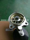 Tendeur de courroie de cannelure de Deutz F4l912 2