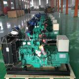 centrale elettrica elettrica della biomassa del fuoco di legno del gas delle paglie 10kw-600kw