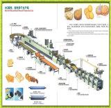 Linha de produção automática de biscoito quente