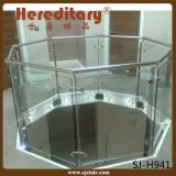 De Balustrade van het Glas van het Balkon van het Roestvrij staal van Frameless (sj-S346)