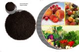 고품질 과립 해초 추출 유기 비료