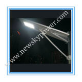 Il LED ha integrato tutti in una lampada di via solare del LED