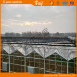 Casa verde de vidro da Multi-Extensão bonita com o telhado F-Limpo da película