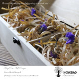 Doos _E van de Gift van de Verpakking van het Schaak van de Luxe van de Prijs van Hongdao de Goedkope Naar maat gemaakte Houten