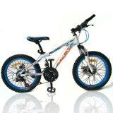 """Fahrrad: 26 """", Gebirgsfahrrad, mit Shimano 21s, Platte-Bremse (MTB-029)"""
