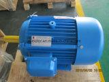 Motor eléctrico de la CA del IEC Starndard la monofásico