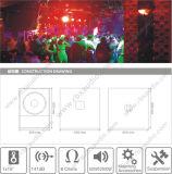 CD-15 escogen 15 el rectángulo pasivo del altavoz para bajas audiofrecuencias de la pulgada 500W