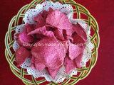 Gemengde Plantaardige Spaanders met Uitstekende kwaliteit