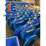 Soupape à vanne industrielle de fer de Ductuile de bride de cheminée d'élévation d'API/DIN/JIS