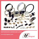 Magnete permanente personalizzato del neodimio di NdFeB con legato
