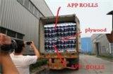 Hy-EPDM maken Membraan met Uitstekende kwaliteit waterdicht