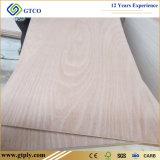Contre-plaqué commercial à l'usine de contre-plaqué du prix de gros 19mm Linyi
