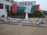 Marinewasser-Pumpe des kielraum-Gcn40-1