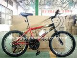 """Manufatura 18 velocidade bicicleta montanha do estudante MTB 20 de """" (FP-KDB-17091)"""