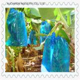 La poly doublure de carton de fruit de chemise de banane a exhalé le sac d'arbre de chemise de fruit exhalé plantant le sac