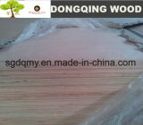 12m m tarjeta laminada 18 milímetros de la madera contrachapada (base del álamo)
